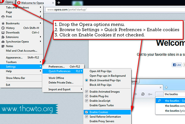 Enable Cookies in Opera